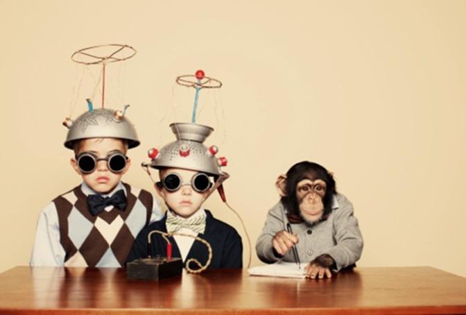 ¿De verdad, qué somos tan astutos e ingeniosos?